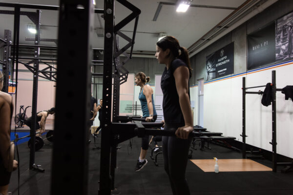 Workouts in GSD Performance